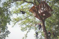 Adrenaline Treehouse (XL)