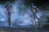 Mountainbike/MTB - down hill